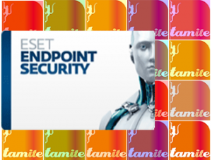 Eset Endpoint Security Software from Tamite IT