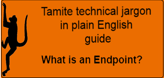 technical term explained what is an endpoint