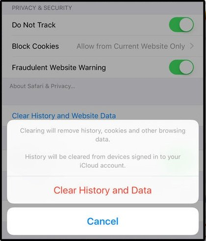 Apple Clear history image